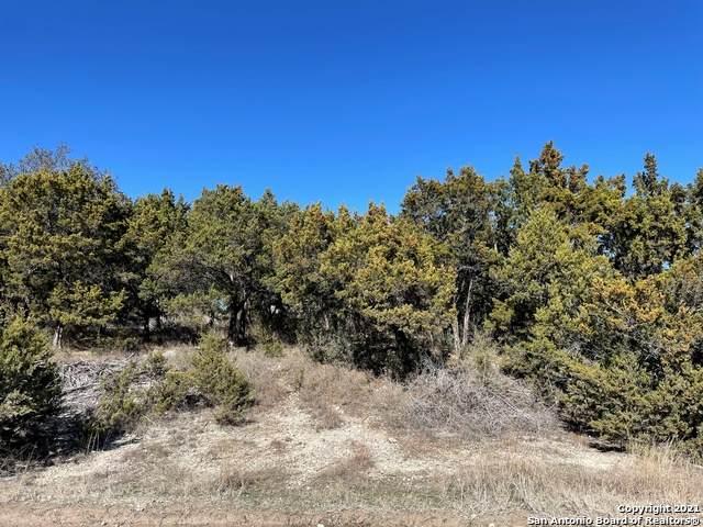 1584 Western Skies Dr, Spring Branch, TX 78070 (MLS #1503784) :: Santos and Sandberg