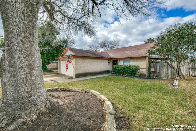 3309 Harvest Dr, Cibolo, TX 78108 (MLS #1503796) :: Alexis Weigand Real Estate Group