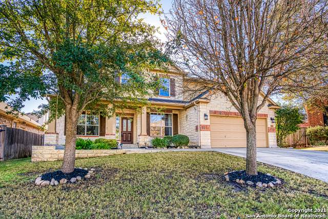 18706 Desert Flower, San Antonio, TX 78258 (MLS #1503863) :: Tom White Group