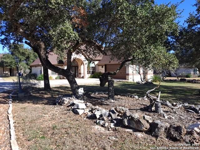 243 Legacy Hills, New Braunfels, TX 78132 (MLS #1504023) :: Exquisite Properties, LLC