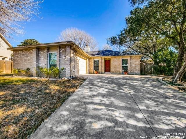 15102 Spring Sky St, San Antonio, TX 78247 (MLS #1504094) :: The Lugo Group