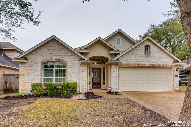 23531 Enchanted View, San Antonio, TX 78260 (MLS #1504165) :: Carter Fine Homes - Keller Williams Heritage