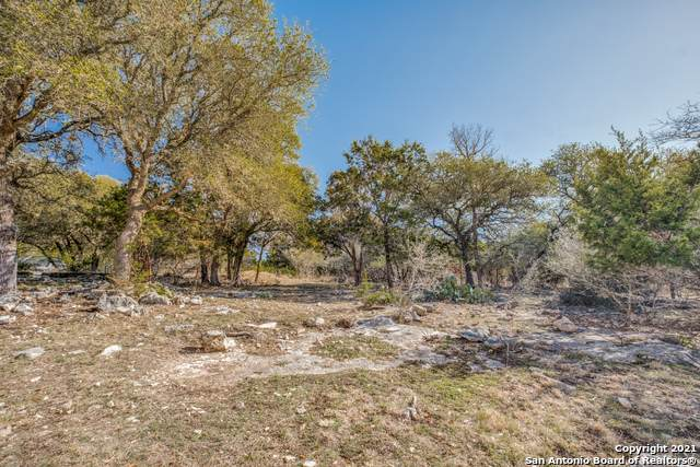 731 Mountain Creek Trail, Boerne, TX 78006 (MLS #1504182) :: Tom White Group