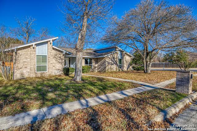 12215 Violet St, San Antonio, TX 78247 (MLS #1504260) :: The Glover Homes & Land Group