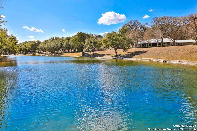 16098 S State Highway 16, Fredericksburg, TX 78624 (MLS #1504274) :: The Glover Homes & Land Group
