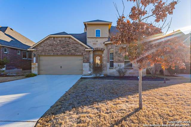 10338 Rocamora, Helotes, TX 78023 (MLS #1504298) :: The Gradiz Group