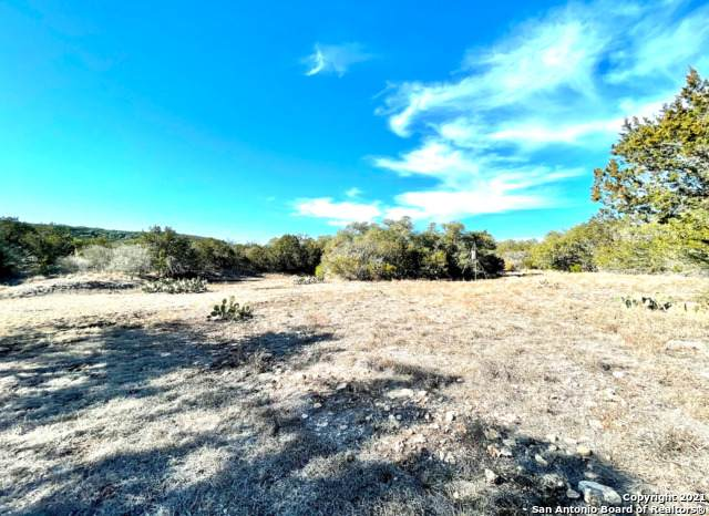 1105 County Road 245, Hondo, TX 78861 (MLS #1504338) :: The Lugo Group