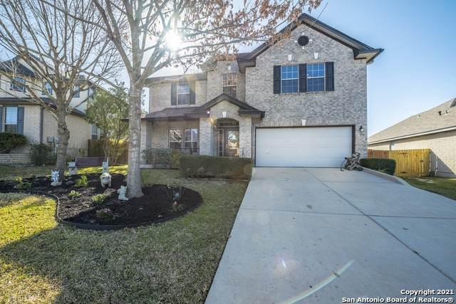105 Springtree Bend, Cibolo, TX 78108 (MLS #1504391) :: Carter Fine Homes - Keller Williams Heritage