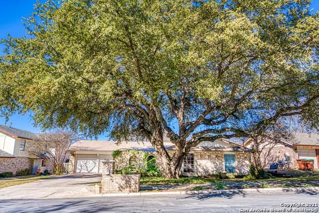 7003 Forest Meadow St, San Antonio, TX 78240 (MLS #1504398) :: The Gradiz Group