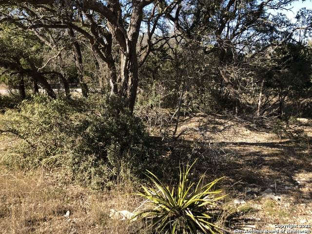 LOT 1730 Lewis Todd, Blanco, TX 78606 (MLS #1504524) :: JP & Associates Realtors