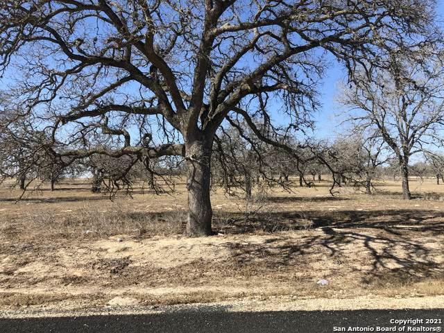 105 Settlement Dr, La Vernia, TX 78121 (MLS #1504590) :: Neal & Neal Team