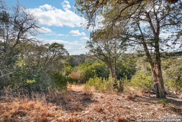 121 Bogi St, Canyon Lake, TX 78133 (MLS #1504608) :: Tom White Group