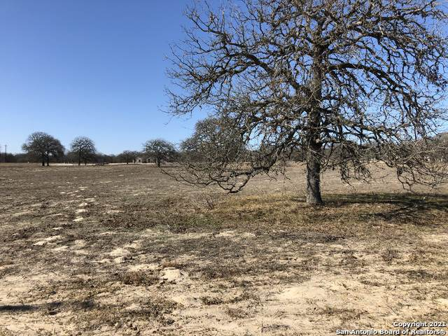 133 Settlement Dr, La Vernia, TX 78121 (MLS #1504644) :: Real Estate by Design