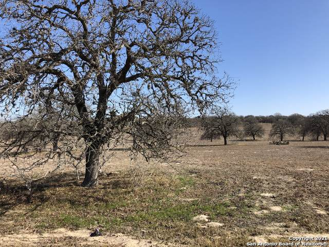 128 Settlement Dr, La Vernia, TX 78121 (MLS #1504658) :: Williams Realty & Ranches, LLC