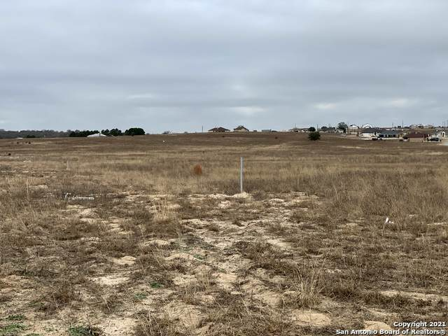 218 Colonial Ln, La Vernia, TX 78121 (MLS #1504871) :: The Glover Homes & Land Group