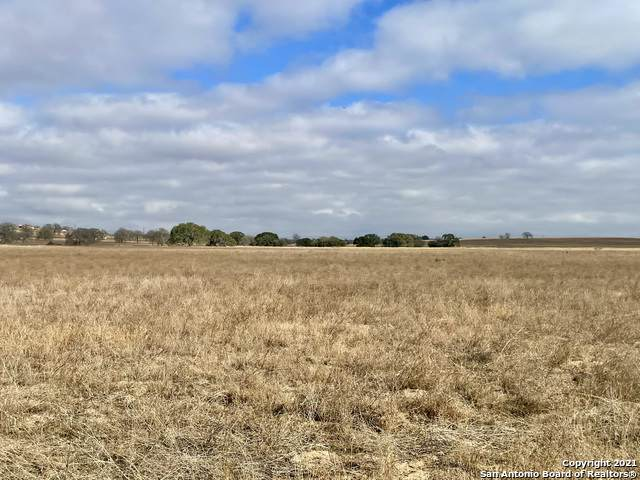 230 Colonial Ln, La Vernia, TX 78121 (MLS #1504881) :: The Glover Homes & Land Group