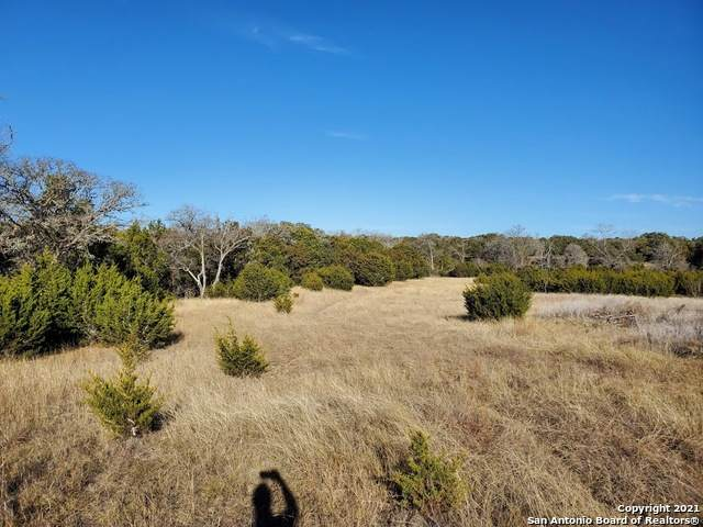 LOT 64 Los Arboles Drive, Blanco, TX 78606 (MLS #1504915) :: EXP Realty