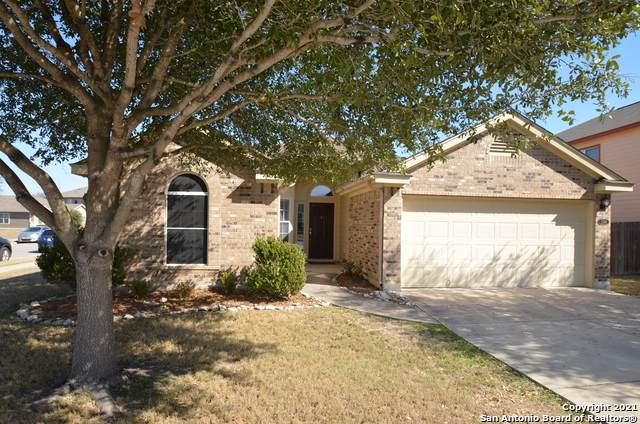7746 Cold Mtn, Converse, TX 78109 (MLS #1504925) :: The Lugo Group