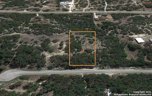 320 Mustang Ln, Spring Branch, TX 78070 (MLS #1505017) :: Tom White Group
