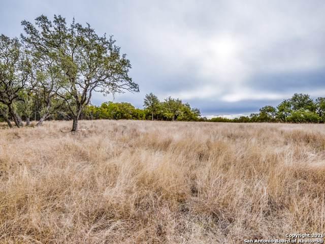 10611 Feldstein Rd, New Braunfels, TX 78132 (MLS #1505099) :: Alexis Weigand Real Estate Group