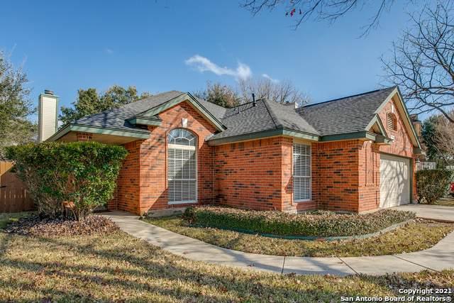 16562 Redland Rnch, San Antonio, TX 78247 (MLS #1505265) :: The Castillo Group
