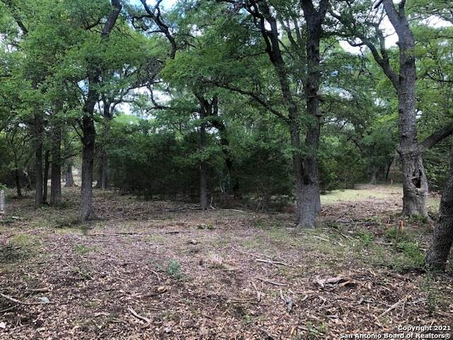 LOT 50 Canyon Creek Preserve Phase 4, Helotes, TX 78023 (MLS #1505273) :: Santos and Sandberg