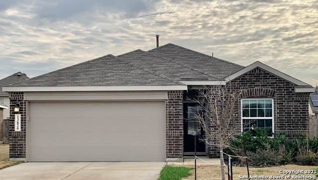 13820 Steadtree Pass, San Antonio, TX 78253 (MLS #1505344) :: The Gradiz Group