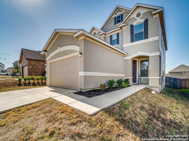 8423 Cordova Pt, San Antonio, TX 78252 (MLS #1505377) :: The Glover Homes & Land Group