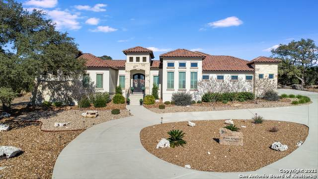 1305 Pinot Grigio, New Braunfels, TX 78132 (MLS #1505528) :: The Gradiz Group