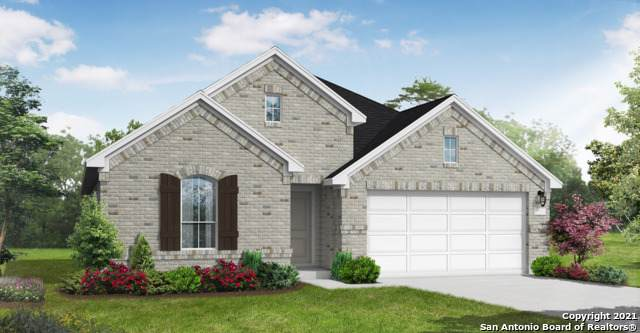 607 Bindseil Grove, Schertz, TX 78154 (MLS #1505574) :: Real Estate by Design