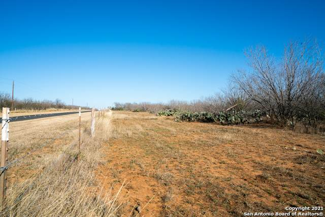 000 Bluntzer Rd., Jourdanton, TX 78026 (MLS #1505691) :: The Lugo Group
