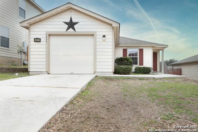 5847 Wildcat Cyn, San Antonio, TX 78252 (MLS #1505703) :: Vivid Realty