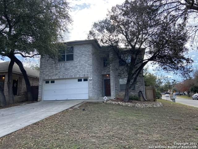 4602 Rock Nettle, San Antonio, TX 78247 (MLS #1505914) :: The Lopez Group