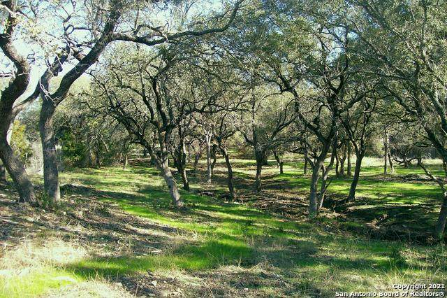 12231 Westcreek Oaks, San Antonio, TX 78253 (MLS #1505988) :: The Lopez Group