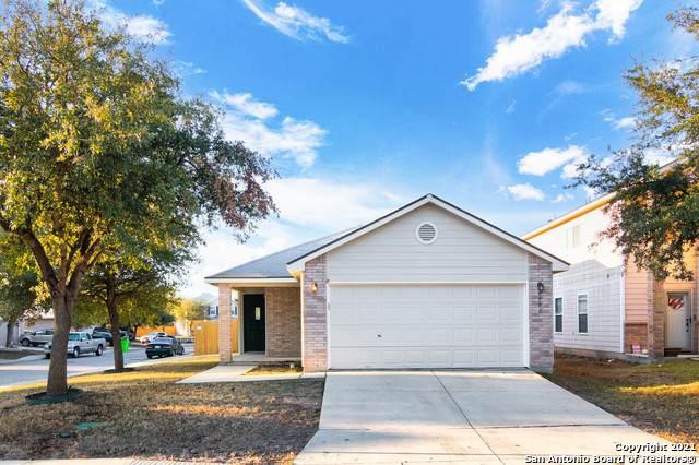 9902 Red Ascot, San Antonio, TX 78254 (MLS #1506183) :: Berkshire Hathaway HomeServices Don Johnson, REALTORS®