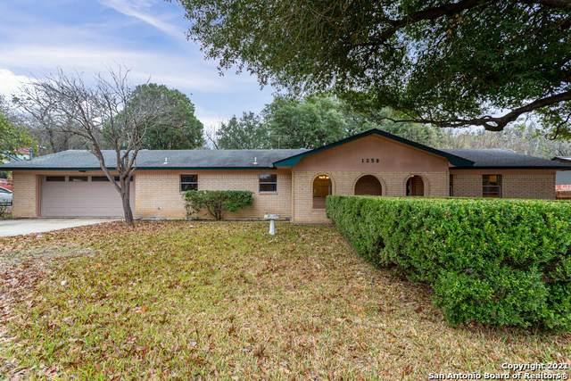 1250 E Common St, New Braunfels, TX 78130 (MLS #1506205) :: Sheri Bailey Realtor