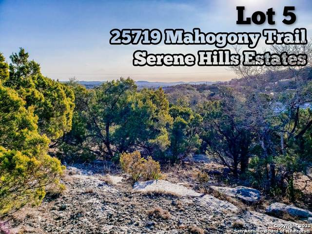 25719 Mahogony Trail, San Antonio, TX 78255 (MLS #1506458) :: ForSaleSanAntonioHomes.com
