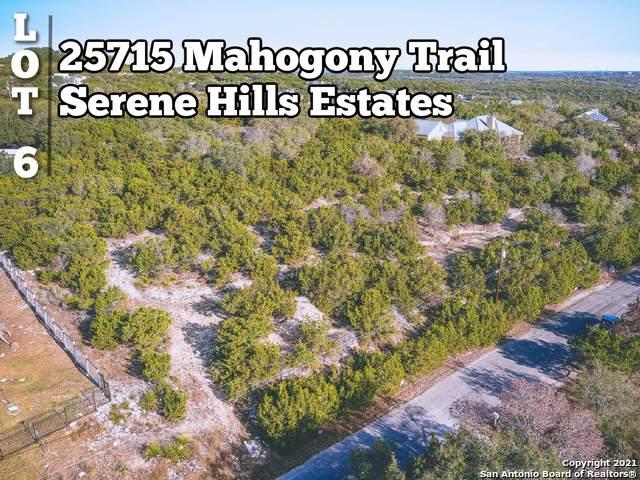 25715 Mahogony Trail, San Antonio, TX 78255 (MLS #1506471) :: Santos and Sandberg