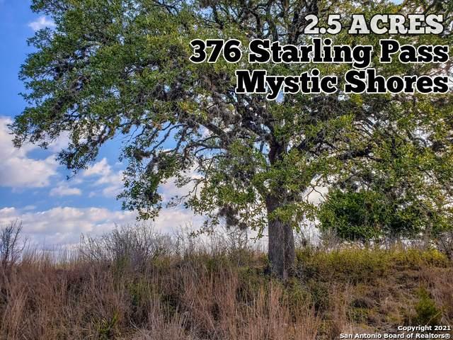 376 Starling Pass, Spring Branch, TX 78070 (MLS #1506789) :: Berkshire Hathaway HomeServices Don Johnson, REALTORS®