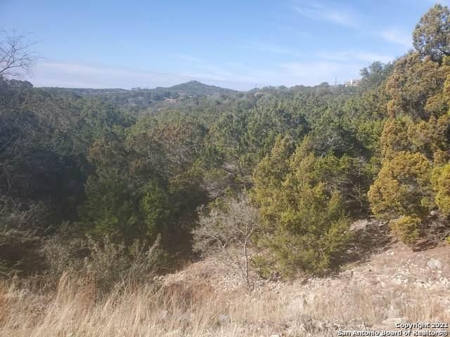 1620 Moerike Rd, Canyon Lake, TX 78133 (MLS #1506960) :: The Gradiz Group