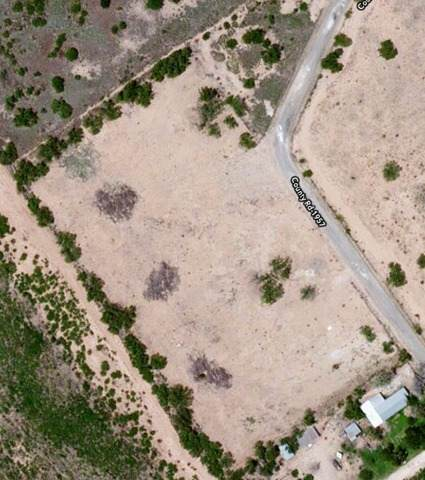 523 Cr 1957, Carrizo Springs, TX 78834 (MLS #1506981) :: The Mullen Group | RE/MAX Access