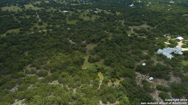 423A Ammann Road, Boerne, TX 78015 (MLS #1506983) :: Alexis Weigand Real Estate Group