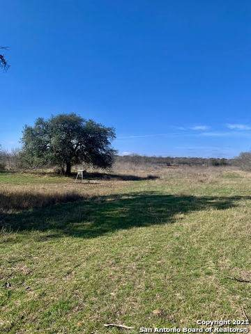 2980 County Rd 4514, Hondo, TX 78861 (MLS #1507224) :: Williams Realty & Ranches, LLC
