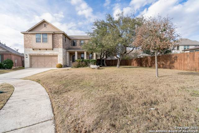 100 Waterfall Ct, Boerne, TX 78006 (MLS #1507401) :: The Castillo Group