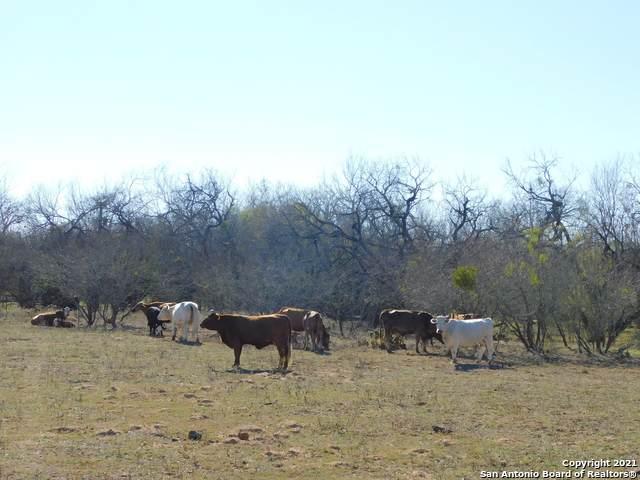 19461 S Jett Rd, San Antonio, TX 78264 (MLS #1507435) :: Vivid Realty