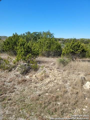 713 Andrew Run, Canyon Lake, TX 78133 (MLS #1507559) :: The Mullen Group | RE/MAX Access
