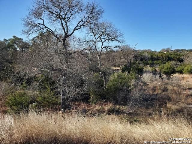 104 Placido, Blanco, TX 78606 (MLS #1507681) :: The Castillo Group