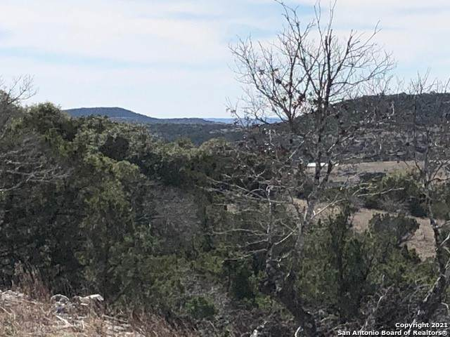 194 Falling Oak Drive, Blanco, TX 78606 (MLS #1507793) :: Keller Williams Heritage