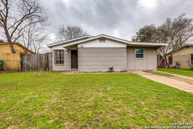 310 E Mally Blvd, San Antonio, TX 78221 (MLS #1507819) :: Vivid Realty