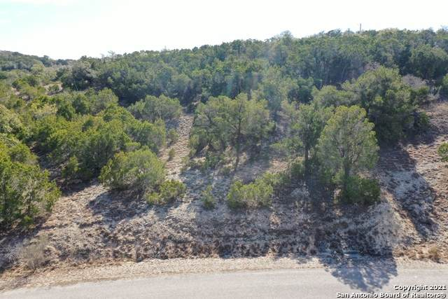 211 Prairie Tea Ln, Canyon Lake, TX 78133 (MLS #1507978) :: Williams Realty & Ranches, LLC